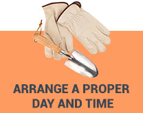arrange a proper day and time